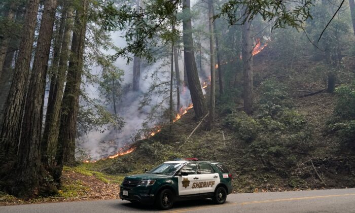 A police vehicle is seen under a forest being burned by the CZU August Lightning Complex Fire near in Bonny Doon, Calif., on Aug. 24, 2020 (Marcio Jose Sanchez/AP Photo)