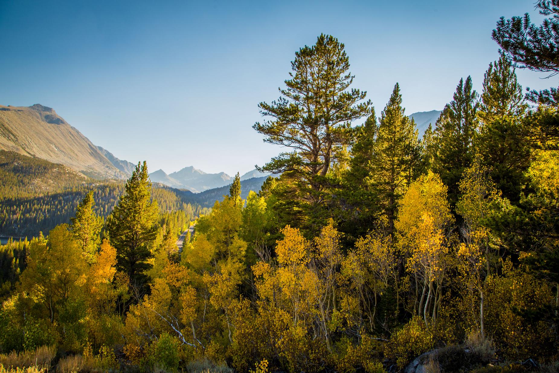 Fall colors, photo credit_ Josh Wray_@JoshWray