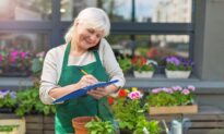 Older Americans Looking for Employment