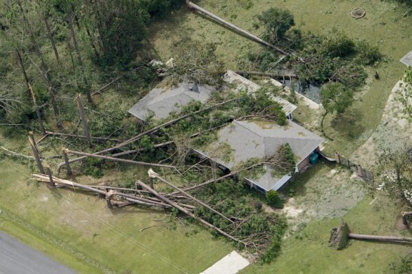 Blown down trees and debris
