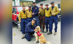 Golden Retriever, 2, Spreads Love and Offers Comfort to Firefighters Battling Woodward Fire