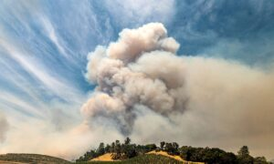 Wildfires Again Threaten Business in California Reeling From COVID-19 Downturn