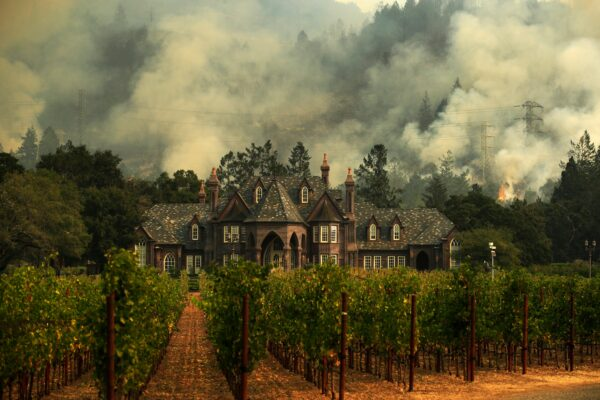 The Tubbs wildfire burns behind a winery in Santa Rosa