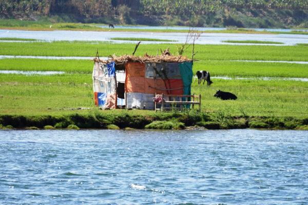 laundry near the nile river