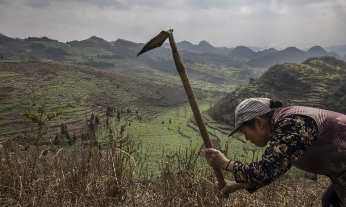 A Yi villager works a field overlooking the Long Horn Miao area of Longga, Guizhou Province, southern China, on February 7, 2017. (Kevin Frayer/Getty Images)