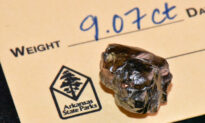 Man Finds 9-Carat Diamond at Arkansas State Park, Second Largest in Park's History