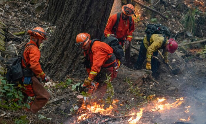 A California Dept. of Corrections fire crew puts down hot spots while fighting the CZU August Lightning Complex Fire, in Bonny Doon, Calif., on Aug. 21, 2020. (Marcio Jose Sanchez/AP Photo)