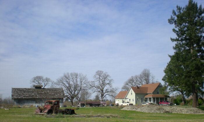 A dairy farm in Pierce County, Washington. (Ben Cody/Public Domain)