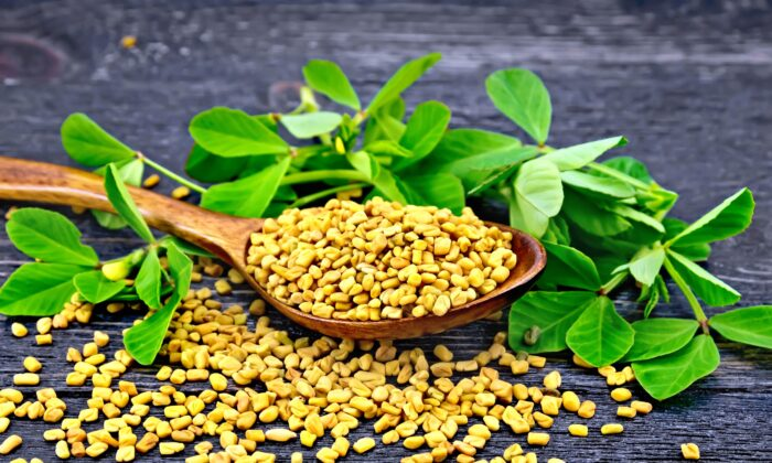 Fenugreek's sweet, aromatic flavor profile is likened to maple syrup. It is sometimes used as a flavoring agent  imitation maple syrup, beverages, and tobacco.(kostrez/Shutterstock)