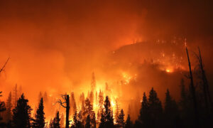 Record 2 Million Acres Burned in California