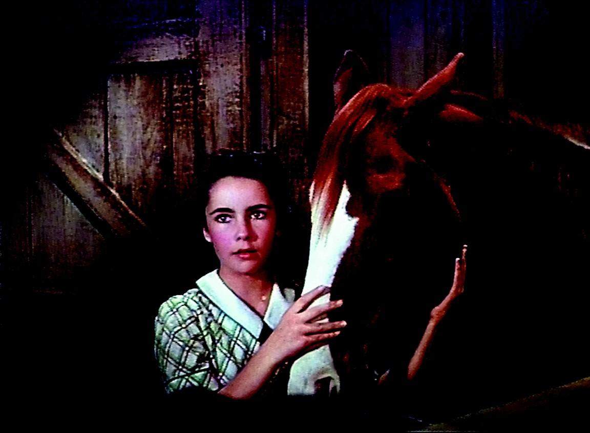 """girl with horse in """"National Velvet"""""""