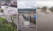 Three Typhoons Hit Northeastern China, Causing Floods and Crop Destruction