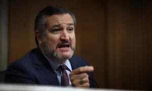 Cruz Says He'll Vote for Republican CCP Virus Relief Bill