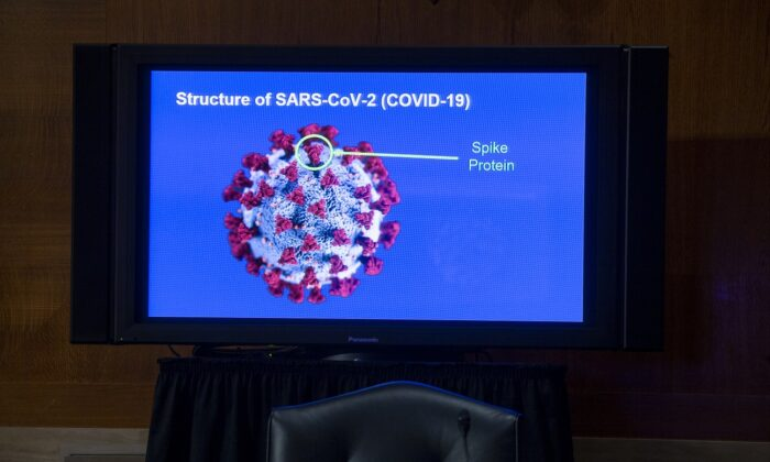 A monitor depicts the structure of SARS-CoV-2 during a Senate Health, Education, Labor, and Pensions Committee hearing to discuss vaccines and protecting public health, in Washington on Sept. 9, 2020. (Michael Reynolds/Pool/Getty Images)
