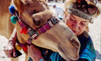 Elderly German Woman Lives Off-Grid With 40 Camels in a Desert Farm in Dubai