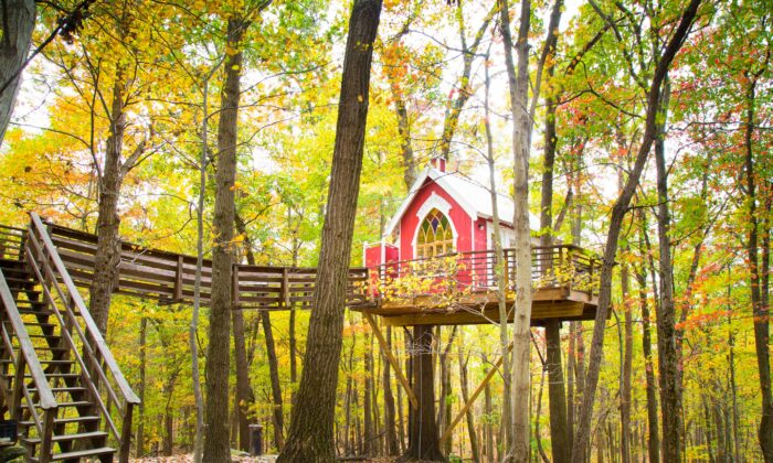 The Mohicans' Little Red Treehouse in Glenmont, Ohio. (Courtesy of The Mohicans)