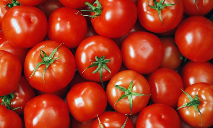 The shiny round orbs the color of sports cars that get more speeding tickets—also known as tomatoes that look like tomatoes—are the tomatoes that make the best sauce. (Deniss09/Shutterstock) or (Vit-vit/Shutterstock)
