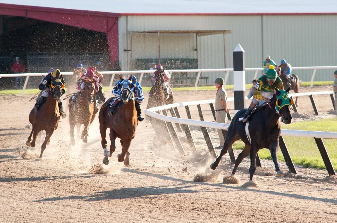 """horses on the track in """"Secretariat"""""""