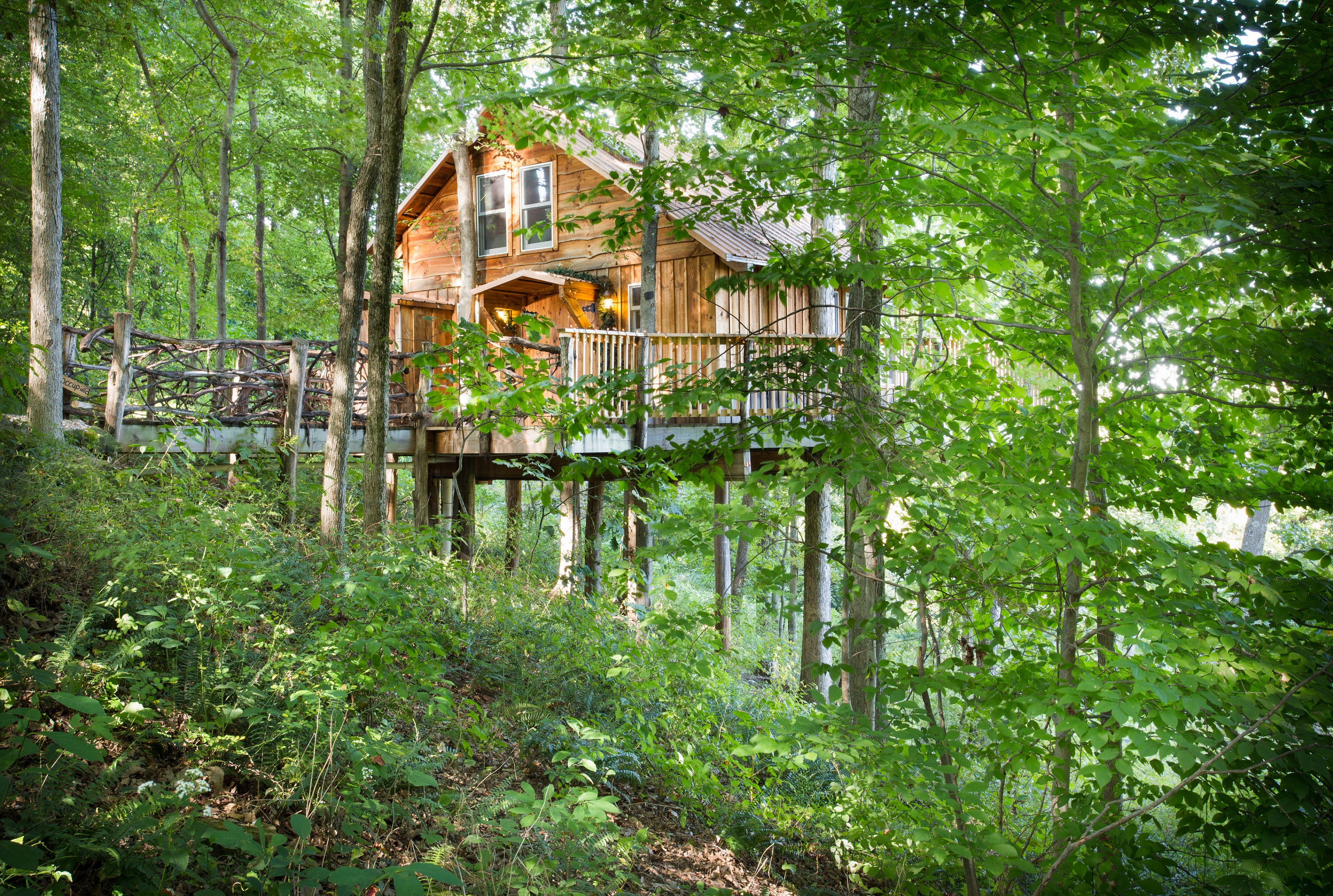 White Oak Treehouse 38