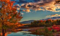 America's Finest Leaf-Peeping: 5 Best Places to Enjoy Fall Splendor