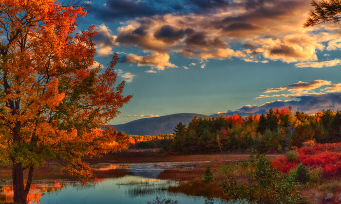 An October afternoon in Acadia National Park, Maine. (Barbara Barbour/Shutterstock)