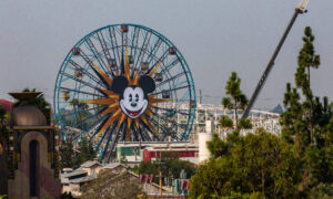 State Clears Theme Parks, Ballparks To Reopen, With Strict Capacity Rules