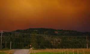 Tireless Relief Efforts and First Rainfall May Signal Hope for Oregon Amid Wildfire Crisis