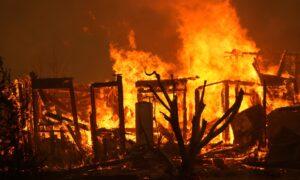 Wildfires, Coronavirus, and an Earthquake Collided for California's Terrible Week