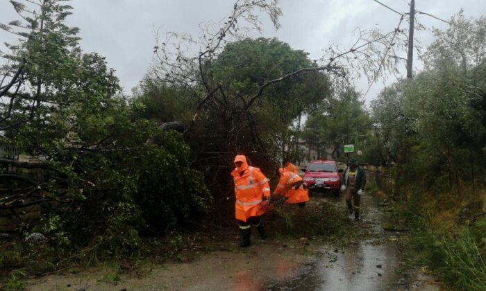 Firefighters remove a fallen tree from a road in the island of Zakynthos, as a rare storm, known as a Medicane (Mediterranean hurricane), hit western Greece, on Sept. 18, 2020. (Eurokinissi via Reuters)
