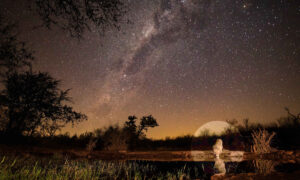 Photographer Captures Stunning Photo of Lion Taking a Drink Under the Milky Way in South Africa