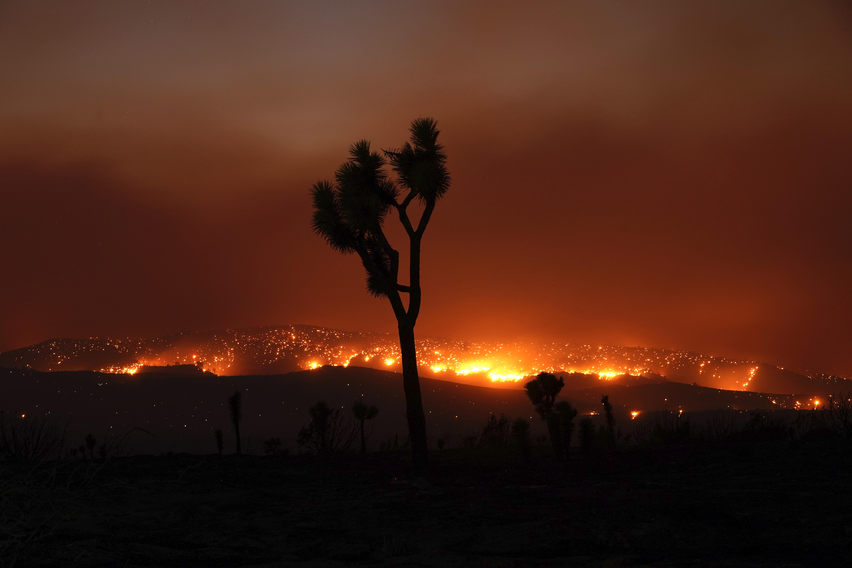 The Bobcat Fire burns