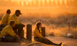 Firefighters Battle Exhaustion With Wildfire Flames: 'You Can't Breathe, You Can't See'