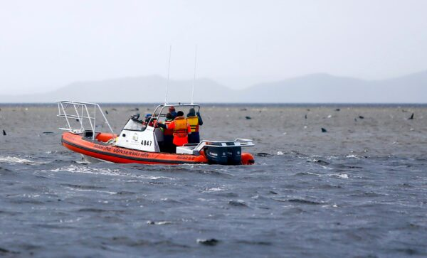 Rescue workers make a survey from a boat