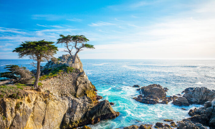 The Lone Cypress on 17-Mile Drive in Pebble Beach. (Lynn Yeh/Shutterstock)