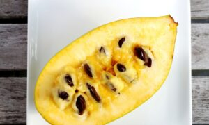 Pickin' Up Pawpaws: America's Biggest, Tastiest, Once-Forgotten Native Fruit