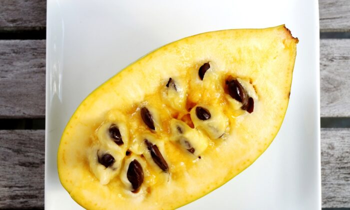 The tropical-like pawpaw fruit has a custardy texture and a flavor reminiscent of banana, mango, or pineapple. (EQRoy/Shutterstock)