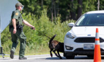 Border Patrol K9s Sniff Out 7lbs Cocaine, Meth, Pot, Leads to Arrest of 2 Drug-Smuggling Suspects