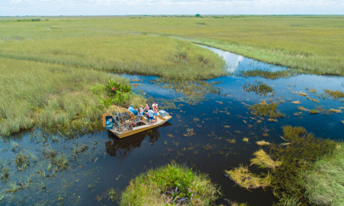 Airboat tour, Everglades National Park. (Mia2you/Shutterstock)
