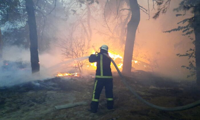 A firefighter works at the site of a forest fire in Luhansk region, Ukraine, in this handout picture released on Oct 1, 2020. (State Emergency Service Of Ukraine/Handout via Reuters)