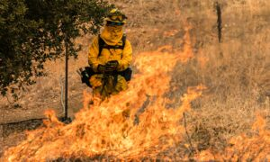 California Nears Milestone: 4 Million Acres Burned in Fires