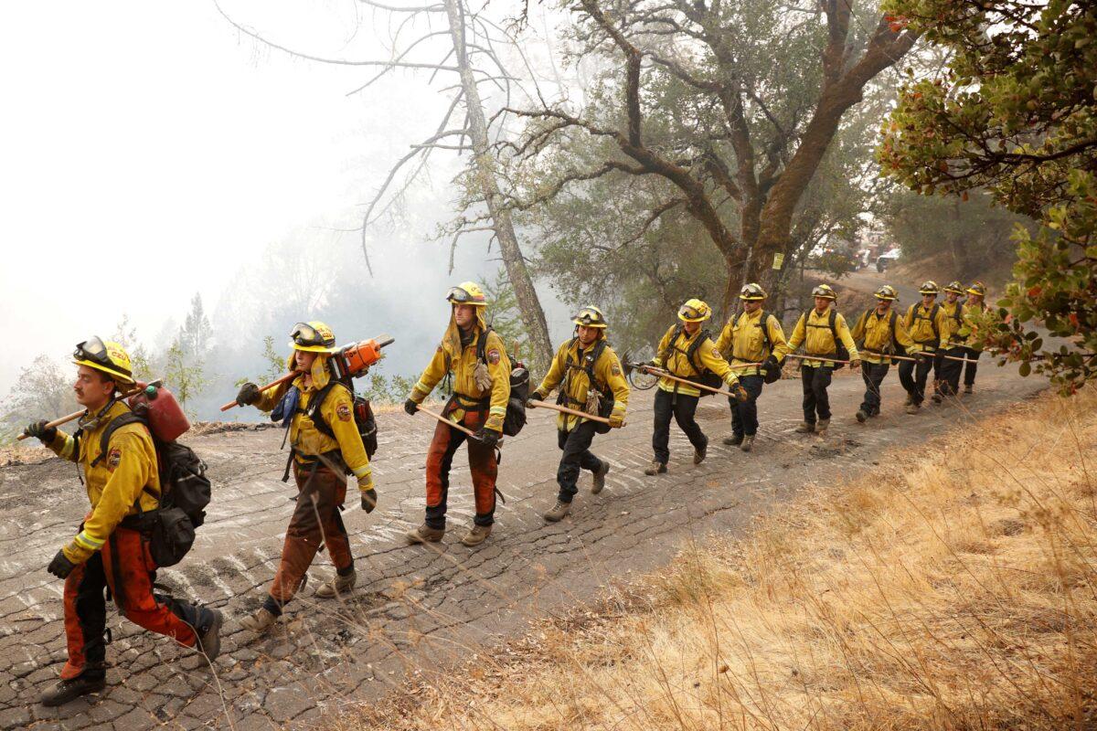 Members of the Cal Fire CZU