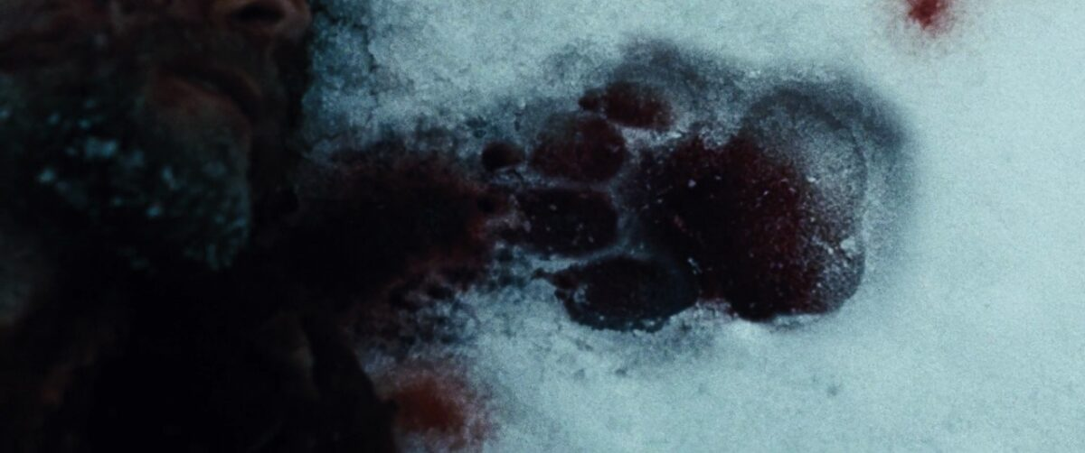 """a bloody wolf print in """"The Grey"""""""