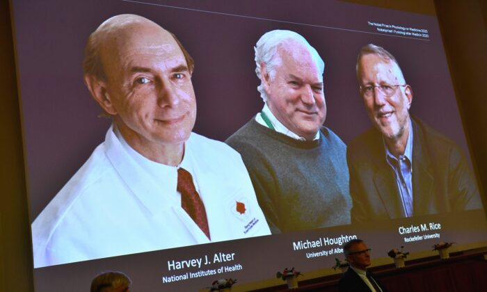 The 2020 Nobel laureates in Physiology or Medicine are announced during a news conference at the Karolinska Institute in Stockholm, Sweden, on Oct. 5, 2020. (Claudio Bresciani/TT via AP)