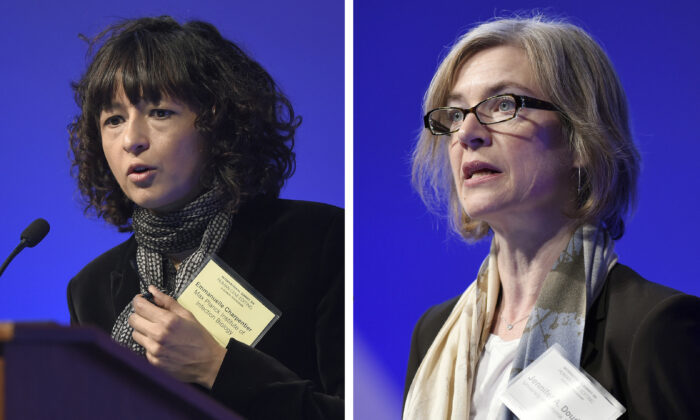 Emmanuelle Charpentier (L) and Jennifer Doudna, both speaking at the National Academy of Sciences international summit on the safety and ethics of human gene editing, in Washington, on Dec. 1, 2015. (Susan Walsh/AP Photo)