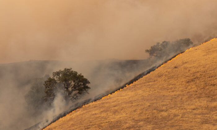 The Glass Fire burns in the hills near a vineyard in St. Helena, Calif. The Napa Valley, the worldwide symbol of fine wine in America, has been burning for weeks. (Von Trevor Bexon/Shutterstock)