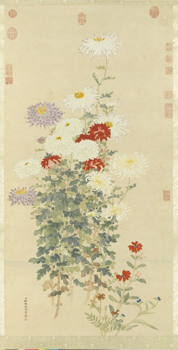Qian Weicheng's painting of five different types of chrysanthemums