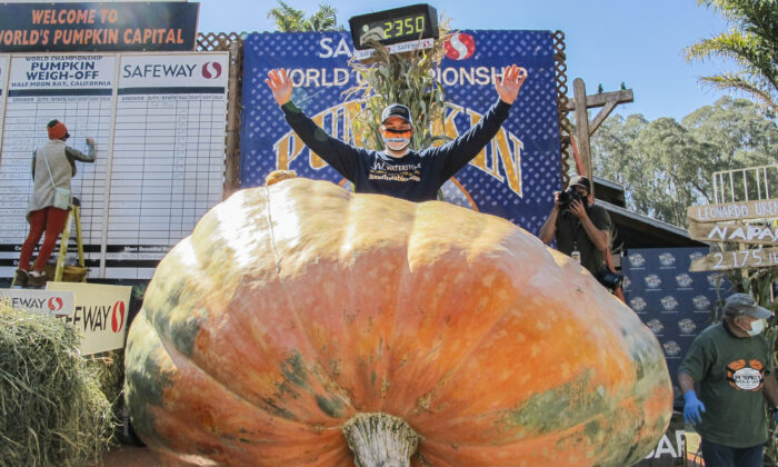 Travis Gienger is the champion of a 2,350-pound pumpkin, at Half Moon Bay's annual Safeway World Championship Pumpkin Weigh-Off on Oct. 12, 2020. (Ilene Eng/The Epoch Times)