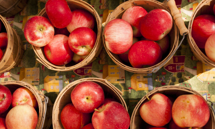 Apples are abundant and cheap this time of year. (Arina P Habich/Shutterstock)