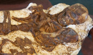 Mother's Love Shines Through in 4,800-Year-Old Archeological Discovery