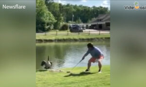 Golfing Fail Moments